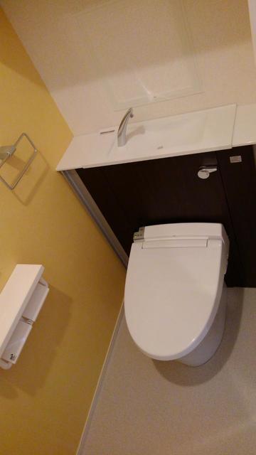 プラシード 02020号室の洗面所