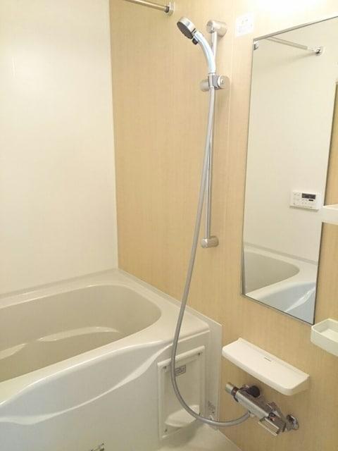 セルカS Ⅱ 01010号室の洗面所