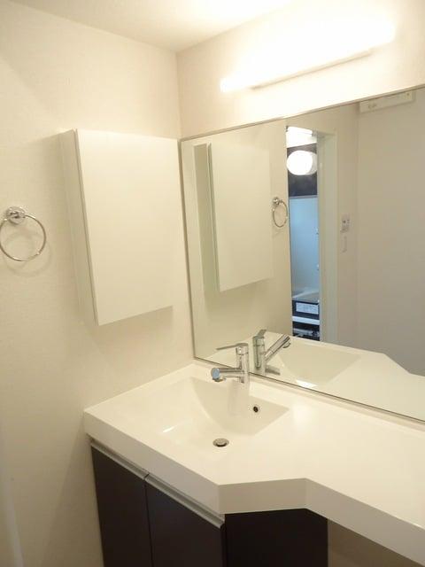 シャトレー 205号室の洗面所