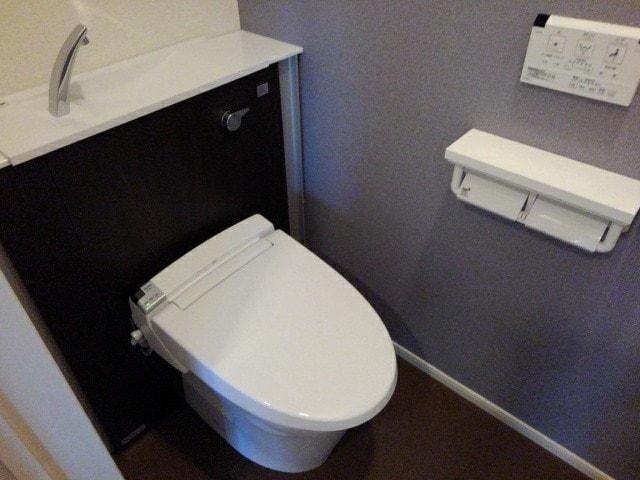 フルール小柳 203号室のトイレ