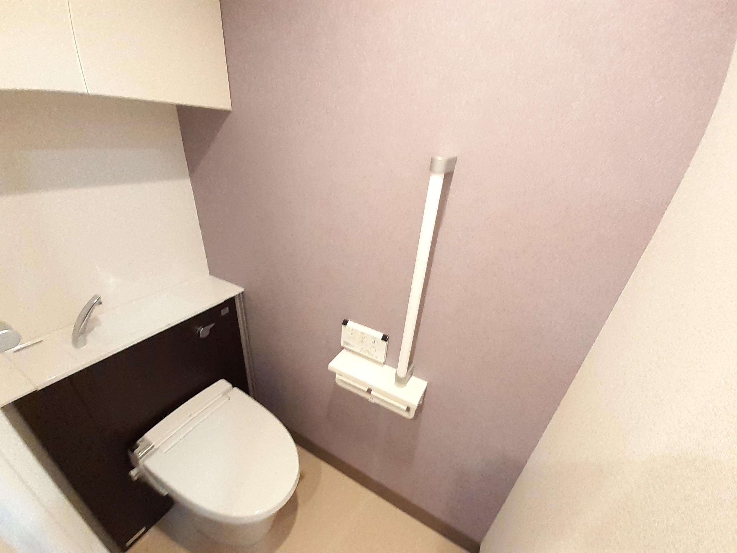 メゾン Shinka 801号室のトイレ