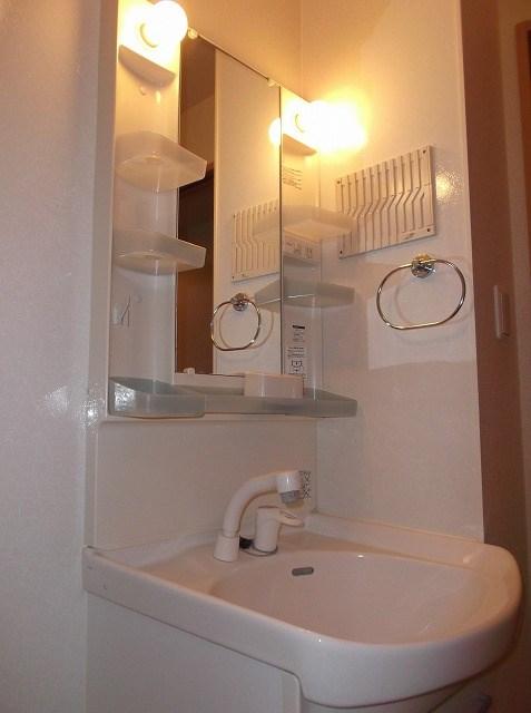グリシーヌ湘南 202号室の洗面所