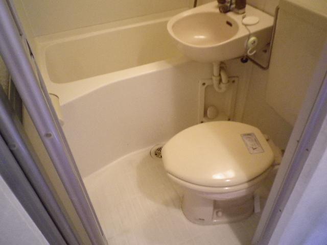 ピアマイン勝山 202号室のトイレ