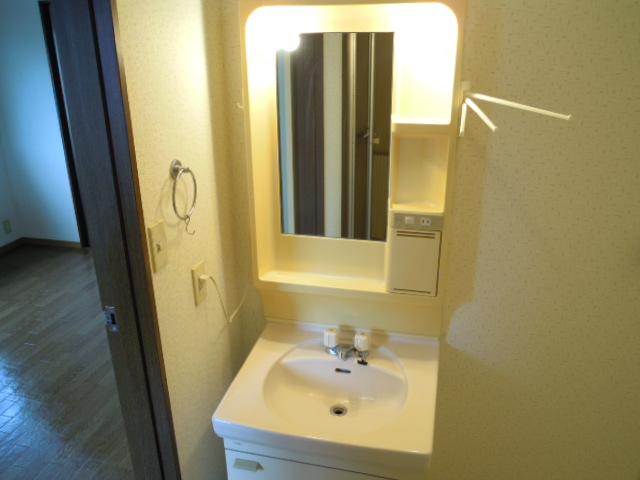 アパートメント294番館A棟 A201号室の洗面所