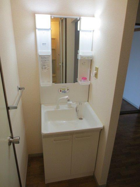 グリーンヒル新宿 202号室の洗面所
