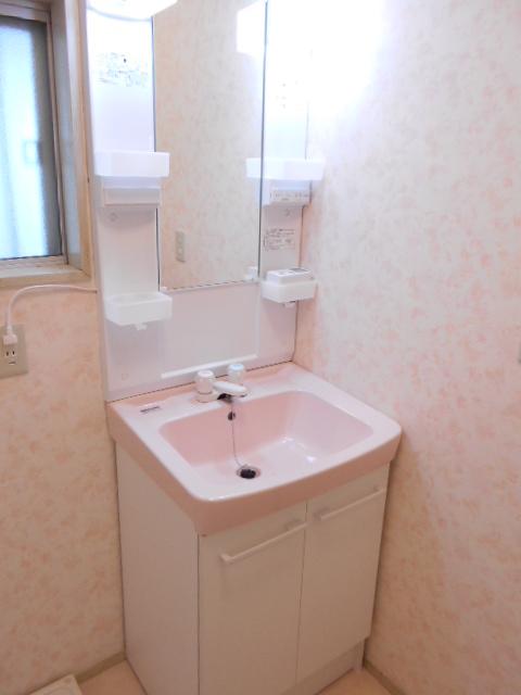 フラワーコーポ 202号室の洗面所