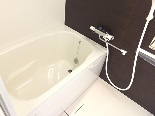 ブループラネット 201号室の風呂