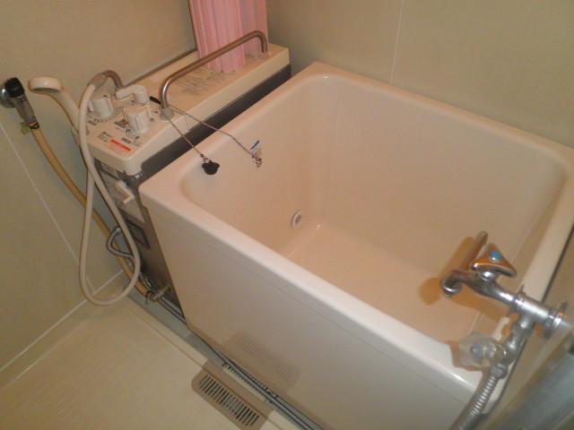 辻サンハイツ 203号室の風呂