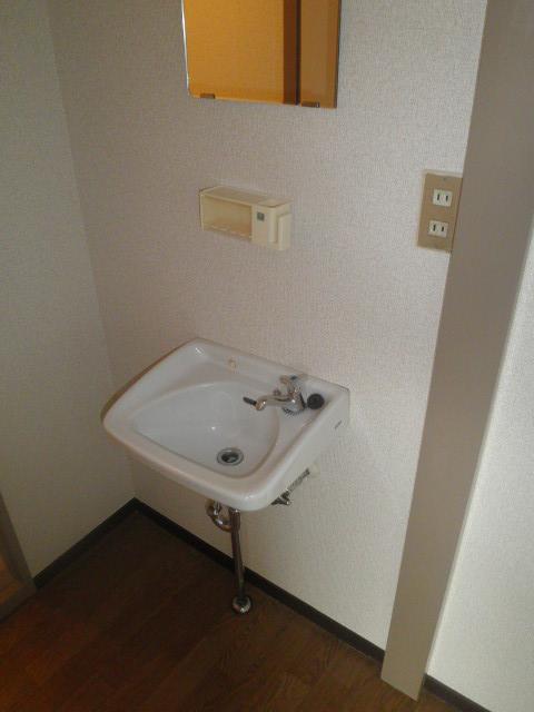 辻サンハイツ 203号室の洗面所