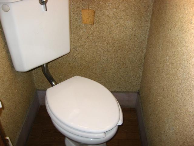 カレッジハイツ 103号室のトイレ