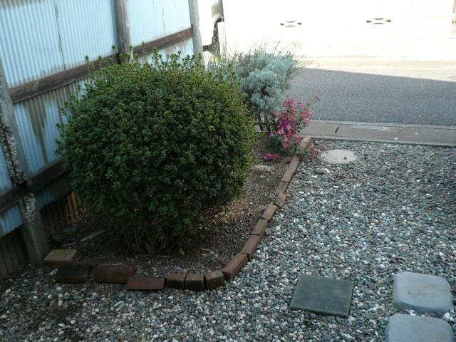 石田様 借家3号棟の庭