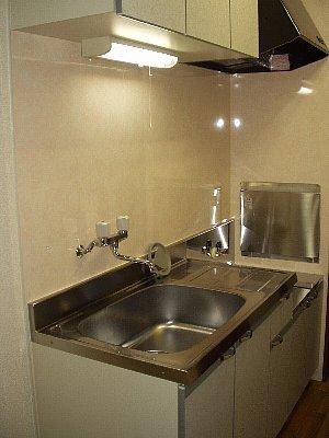 ヴィヴァーチェ若林 302号室のキッチン