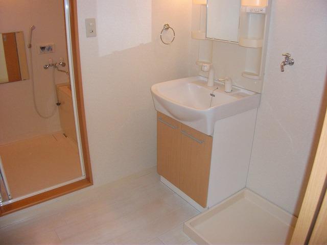 サザンハウスNANREI 306号室の洗面所