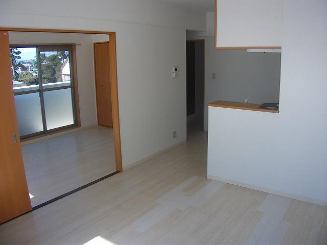 サザンハウスNANREI 306号室の居室