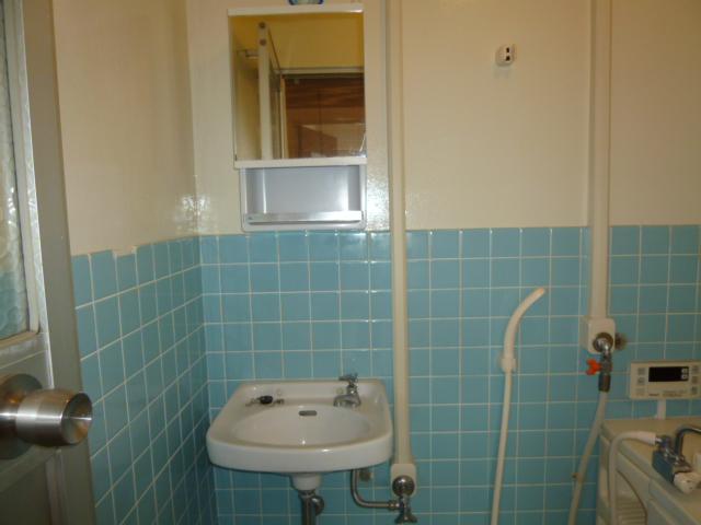 ヴィラ・ノバク 402号室の洗面所