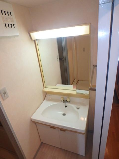 サンメゾン八熊 802号室の洗面所