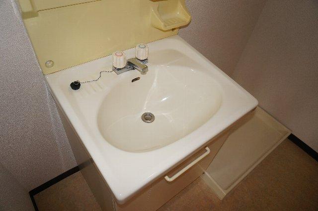 篠原橋マンション 6A号室の洗面所