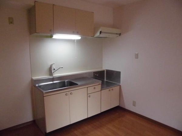 La Zona rosa 106号室のキッチン