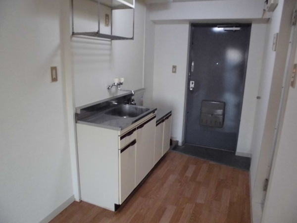 イヌカイビル 503号室のキッチン