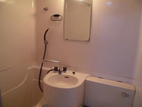 イヌカイビル 503号室の洗面所