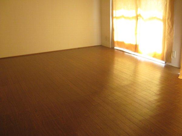松山コーポ 206号室のリビング