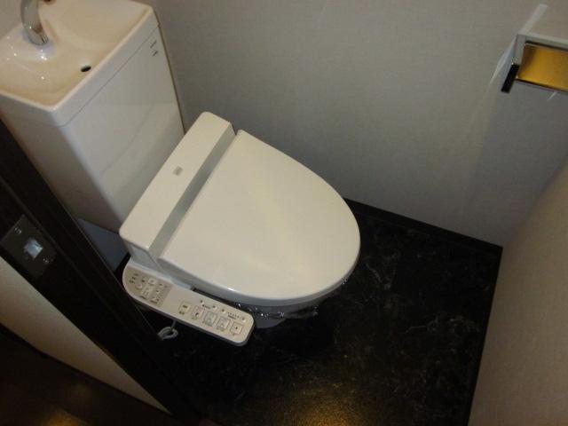 キャッツスルヒルズ柳ケ瀬 1001号室のトイレ