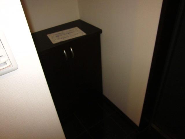 キャッツスルヒルズ柳ケ瀬 1001号室の玄関