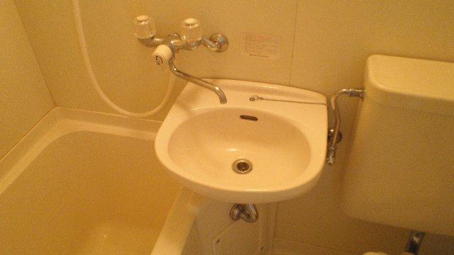 ステラハウスEZ 203号室の洗面所