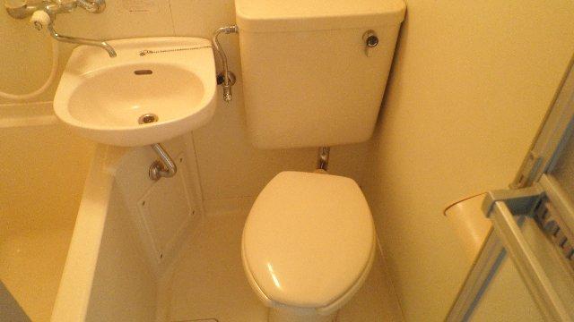 ステラハウスEZ 203号室のトイレ