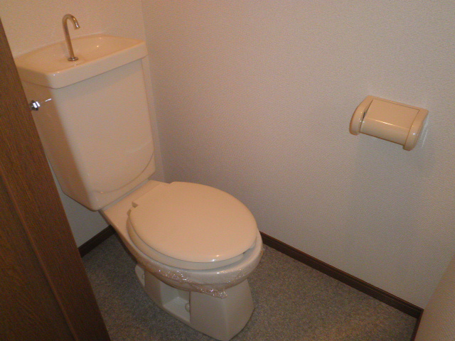 TユーミータカハナB棟 201号室のトイレ