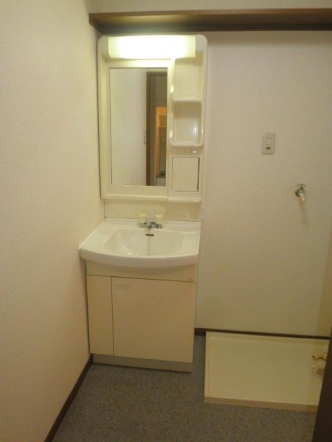 TユーミータカハナB棟 201号室の洗面所