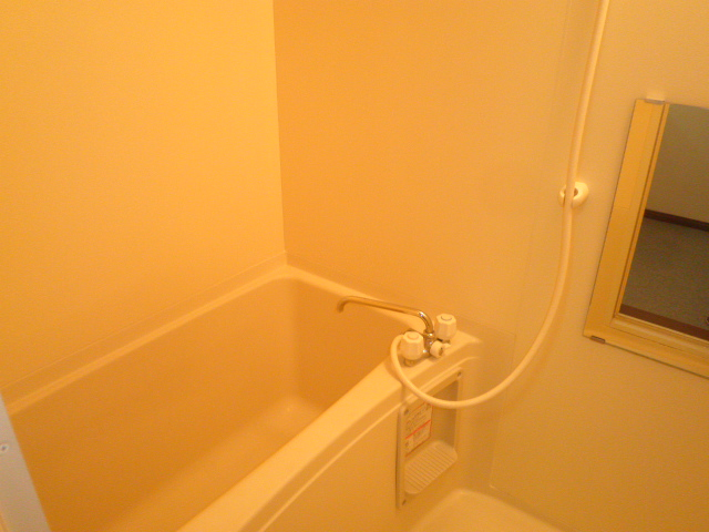 TユーミータカハナB棟 201号室の風呂
