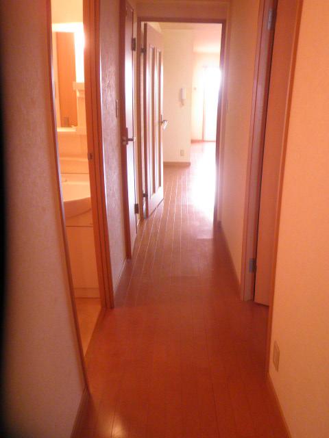 ルミエール 401号室のその他