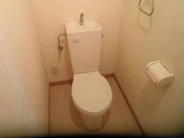 ルミエール 401号室のトイレ