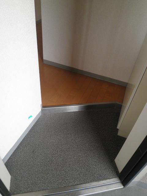 グランシスサウスウエスト 501号室の玄関