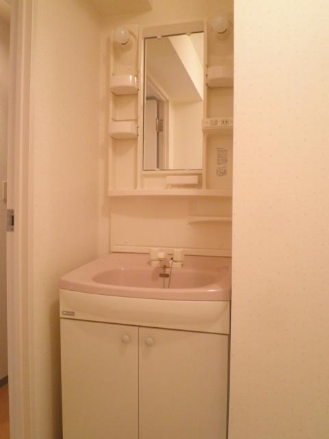 グランシスサウスウエスト 501号室の洗面所