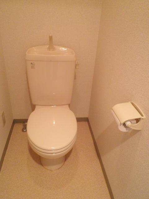 グランシスサウスウエスト 501号室のトイレ