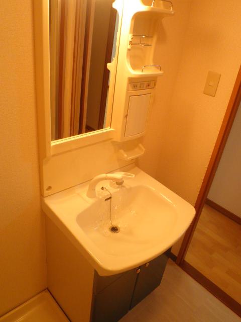 ベルハイム城山 203号室の洗面所