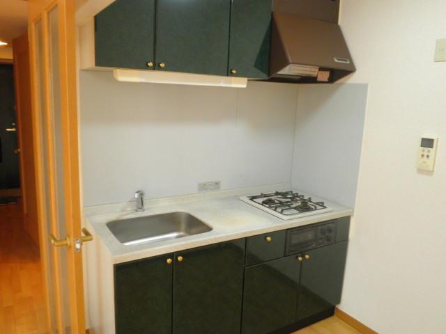 ベルハイム城山 203号室のキッチン