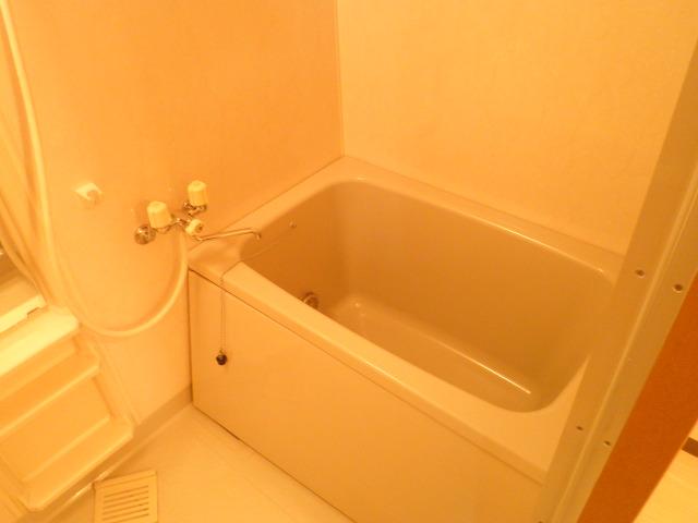 ベルハイム城山 203号室の風呂