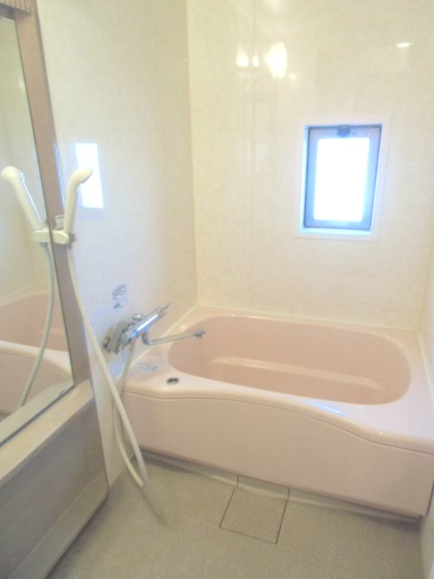 グランシャリオⅡ A 202号室の風呂