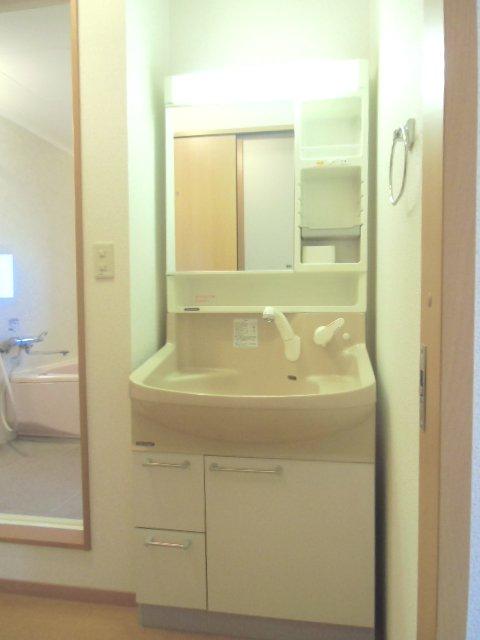 グランシャリオⅡ A 202号室の洗面所