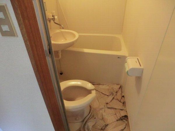 第2富士ハイツ 202号室の風呂