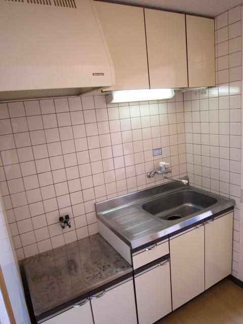 栢森ハイツA 203号室のキッチン