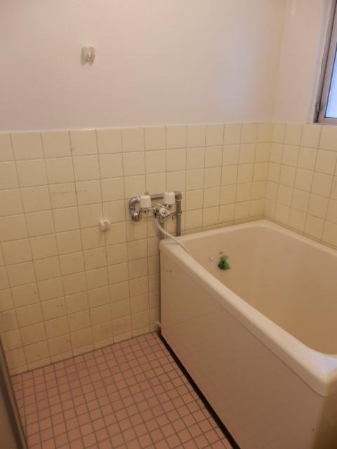 メゾンおおたけⅠ 304号室の風呂