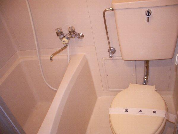 片浜ハイツ 202号室のトイレ