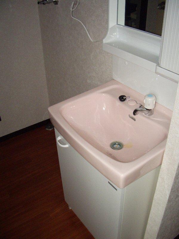 磯部ハイツ月見屋敷A 105号室の洗面所