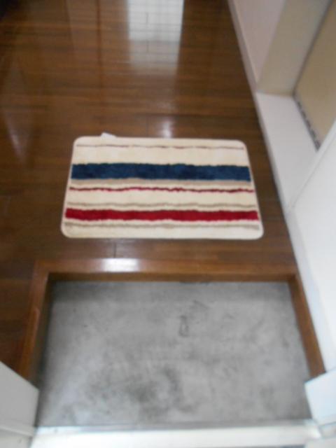 ルネパレス大岡Ⅱ 102号室の玄関