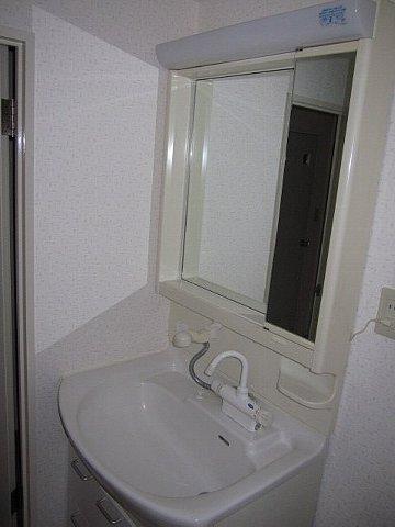 リバーサイドコート 109号室の洗面所