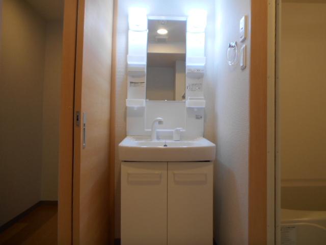 ティエラロッソ 401号室の洗面所
